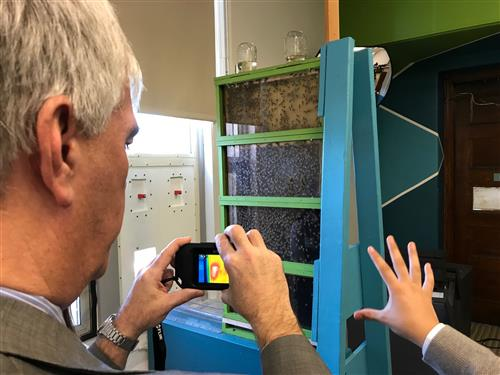 Thermal imaging camera is used on the beehive in the school library